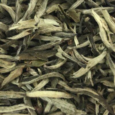 eteaket-SILVER-NEEDLE-tea