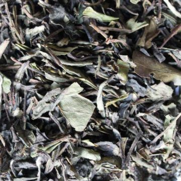eteaket White Peach Loose Leaf Tea