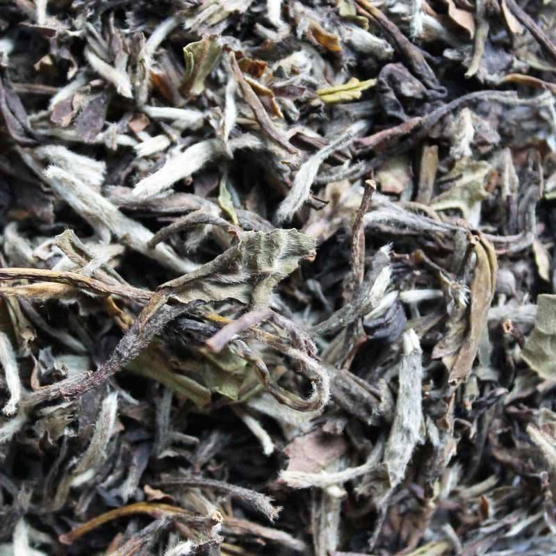 eteaket White Peony Loose Leaf Tea