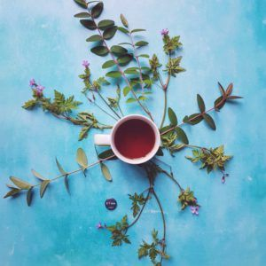 eteaket Blueberry Rooibos tea