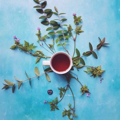 eteaket_Blueberry_Rooibos_Tea
