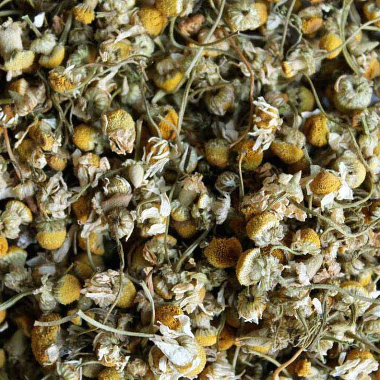 chillaxin-chamomile-loose-leaf