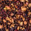 eteaket Sea Buckthorn Loose Leaf Tea