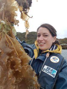 Erica harvesting sea kelp