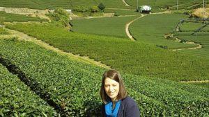 tea garden japan blog