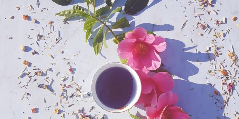Tea Tasting Saturday